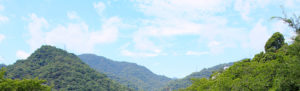 芦屋たなべまり鍼灸院のある町の風景